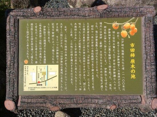 市田柿原木の地説明.jpg